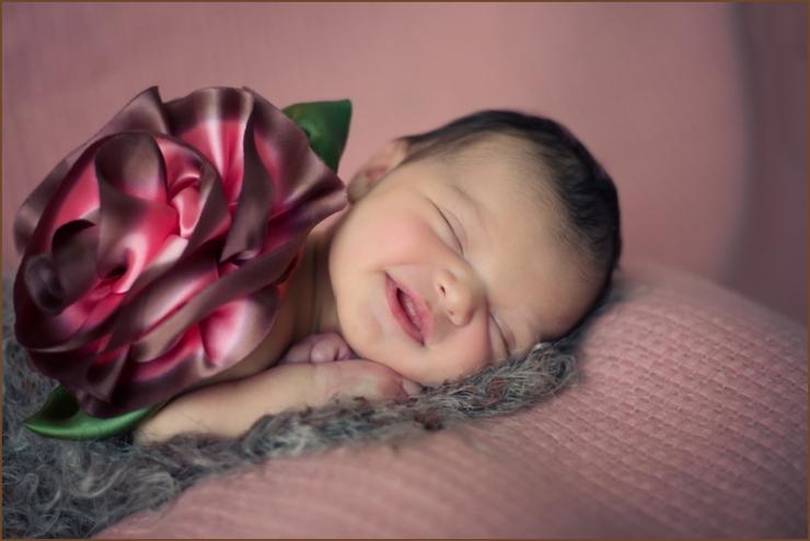 newborn baby photos beverly hall